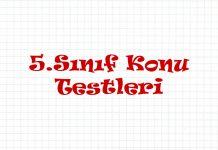 5-sinif-konu-testleri