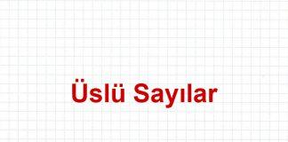 uslu-sayilar